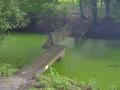 3-sommige-plekken-zijn-te-kwetsbaar-voor-openbaar-gebruik-zoals-hier-in-polderpark-cronesteyun-in-leiden