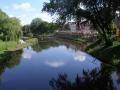 7-natuurontwikkeling-langs-de-dommel-in-den-bosch-juni-2009